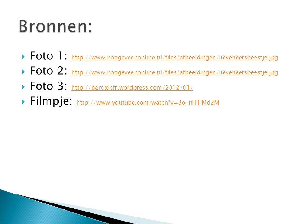  Foto 1: http://www.hoogeveenonline.nl/files/afbeeldingen/lieveheersbeestje.jpg http://www.hoogeveenonline.nl/files/afbeeldingen/lieveheersbeestje.jpg  Foto 2: http://www.hoogeveenonline.nl/files/afbeeldingen/lieveheersbeestje.jpg http://www.hoogeveenonline.nl/files/afbeeldingen/lieveheersbeestje.jpg  Foto 3: http://paroxisfr.wordpress.com/2012/01/ http://paroxisfr.wordpress.com/2012/01/  Filmpje: http://www.youtube.com/watch?v=3o-nHTIMd2M http://www.youtube.com/watch?v=3o-nHTIMd2M