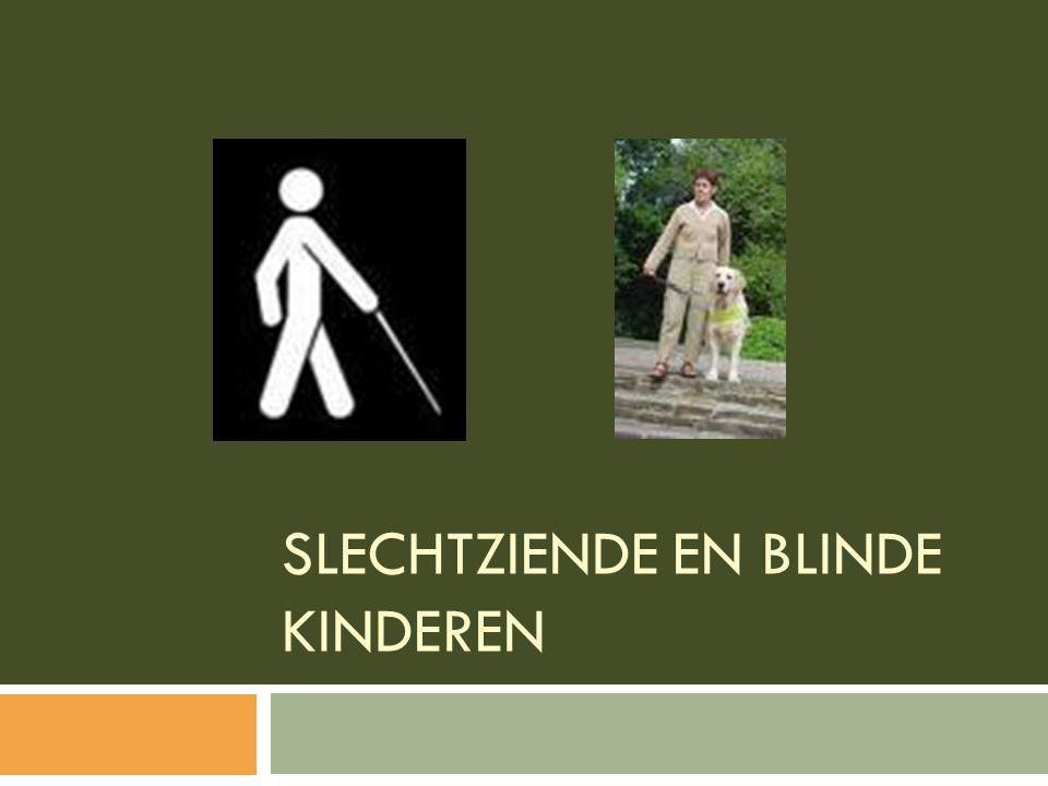 inhoudstafel  Inleiding  Slechtziendheid en blindheid  Psychosociale aspecten  Oorzaken van blindheid en slechtziendheid  Diagnostiek  Begeleiding van onderwijs  Prognose  Secundaire preventie: vroegtijdige onderkenning