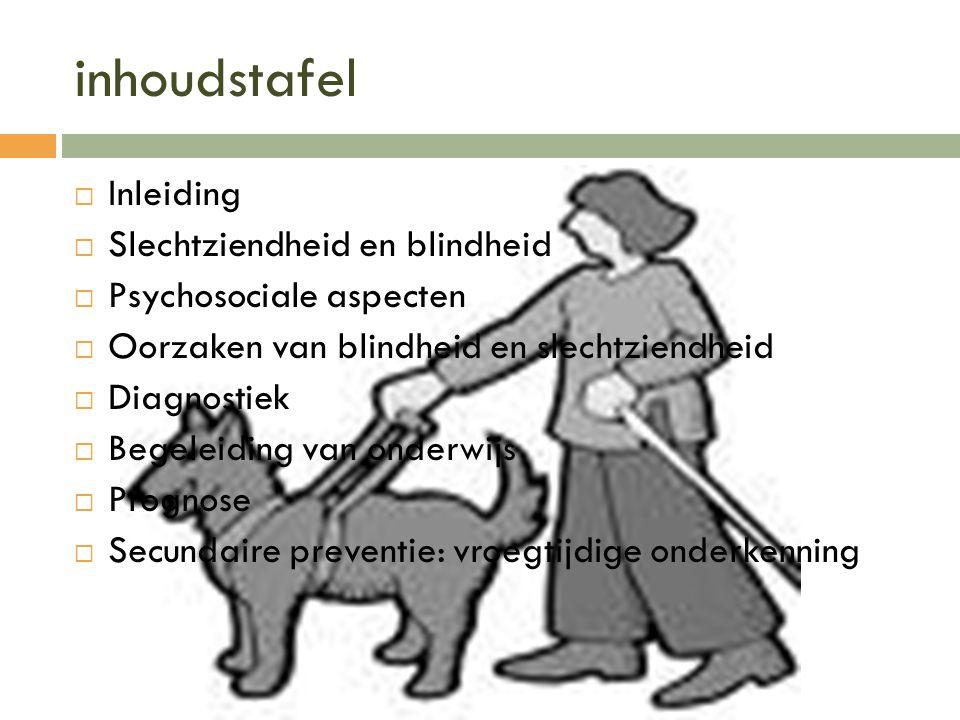 inhoudstafel  Inleiding  Slechtziendheid en blindheid  Psychosociale aspecten  Oorzaken van blindheid en slechtziendheid  Diagnostiek  Begeleidi