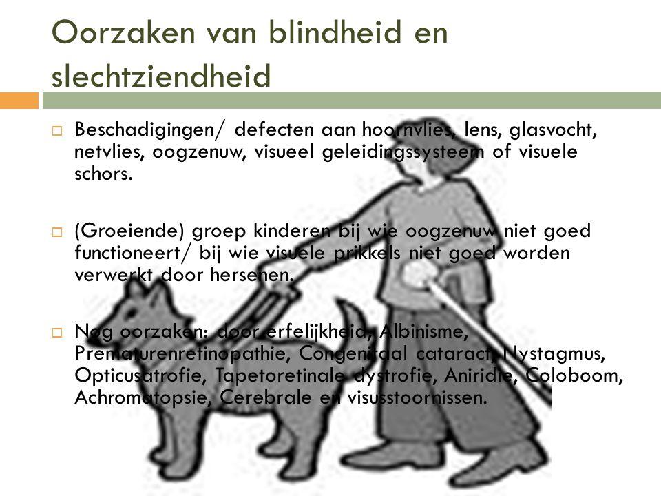 Oorzaken van blindheid en slechtziendheid  Beschadigingen/ defecten aan hoornvlies, lens, glasvocht, netvlies, oogzenuw, visueel geleidingssysteem of