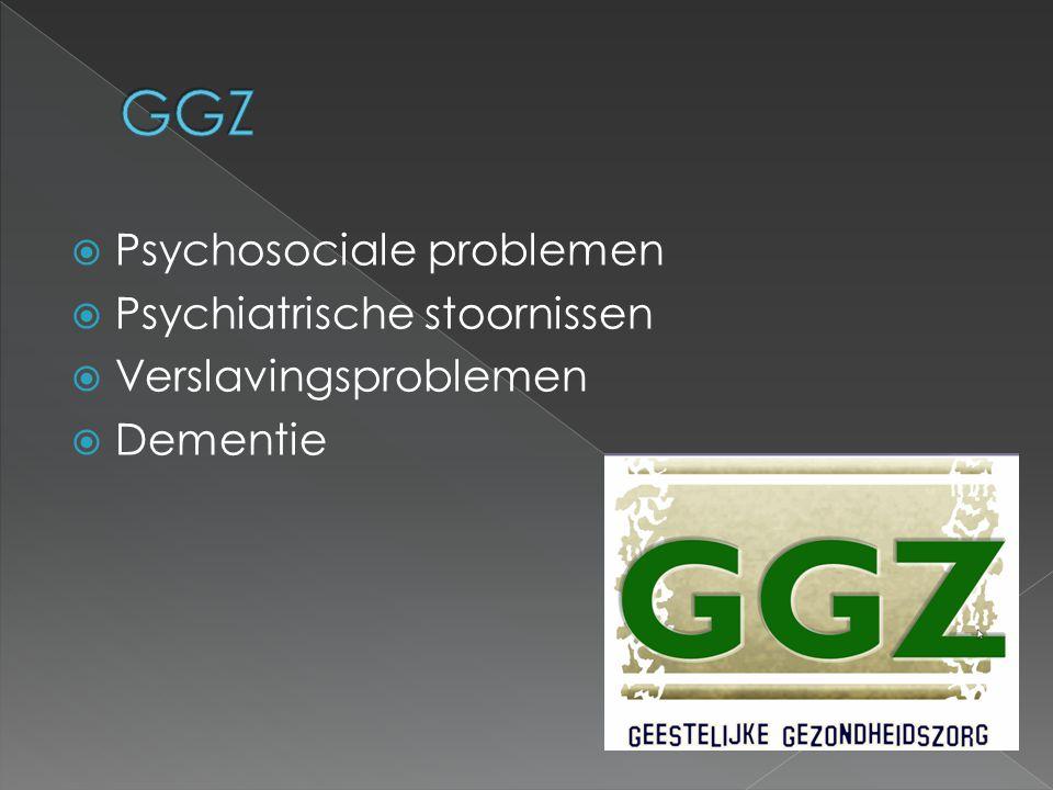  Huisdokter  Maatschappelijk werker  Psychologen,  Psychotherapeuten  Sociotherapeuten  Verpleegkundigen (40%)