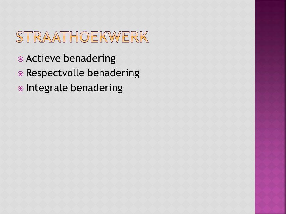  Actieve benadering  Respectvolle benadering  Integrale benadering