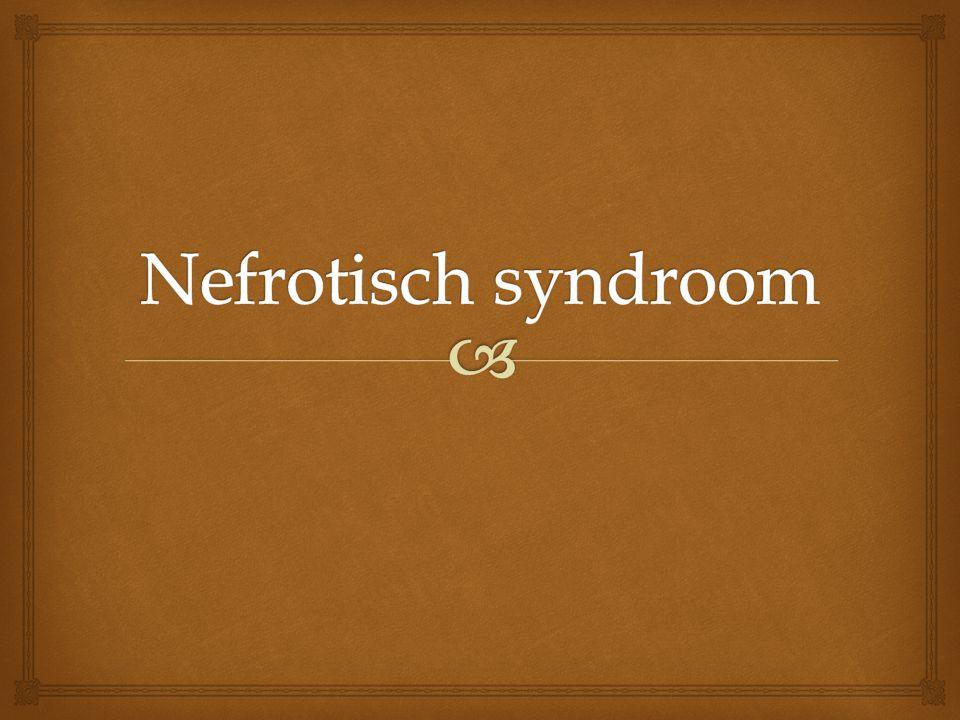   - uitleg nefrotisch syndroom  - verschillende soorten  - symptomen  - oorzaak en gevolg  - behandeling  - besluit inhoudstabel