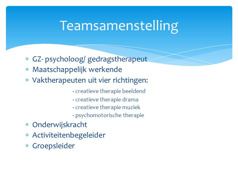  GZ- psycholoog/ gedragstherapeut  Maatschappelijk werkende  Vaktherapeuten uit vier richtingen: - creatieve therapie beeldend - creatieve therapie