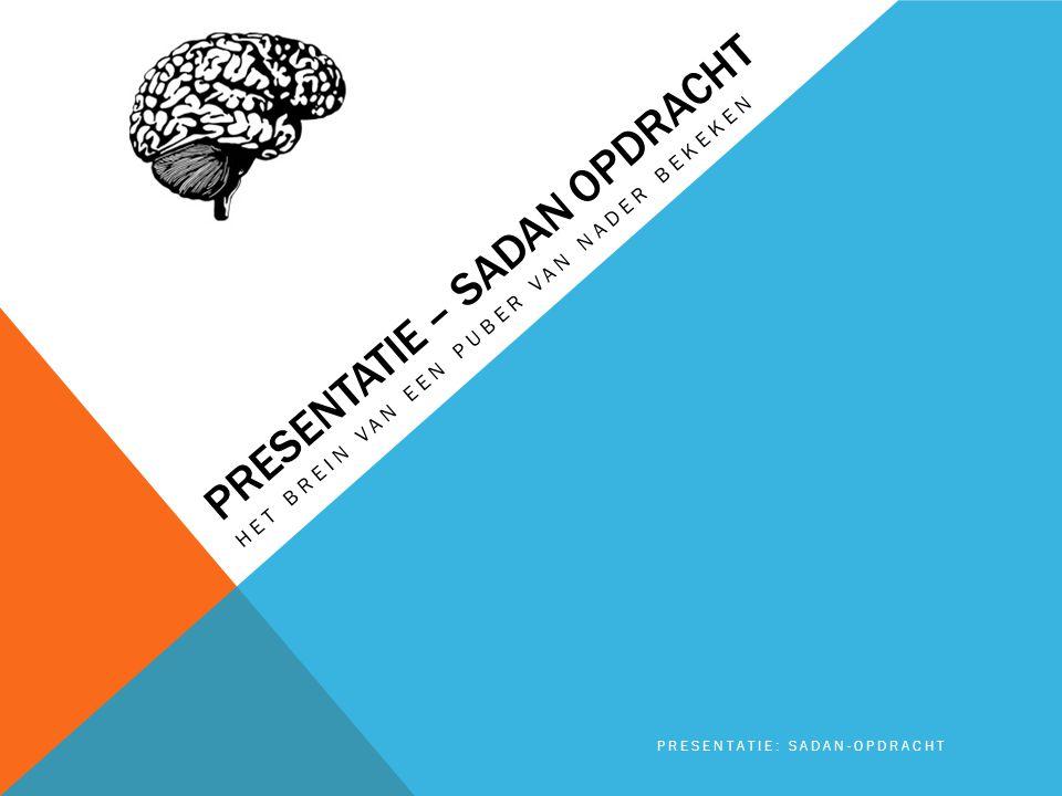 VOORWOORD 'In de leeftijd van twaalf tot achttien jaar zijn de hersenen nog volop in ontwikkeling.