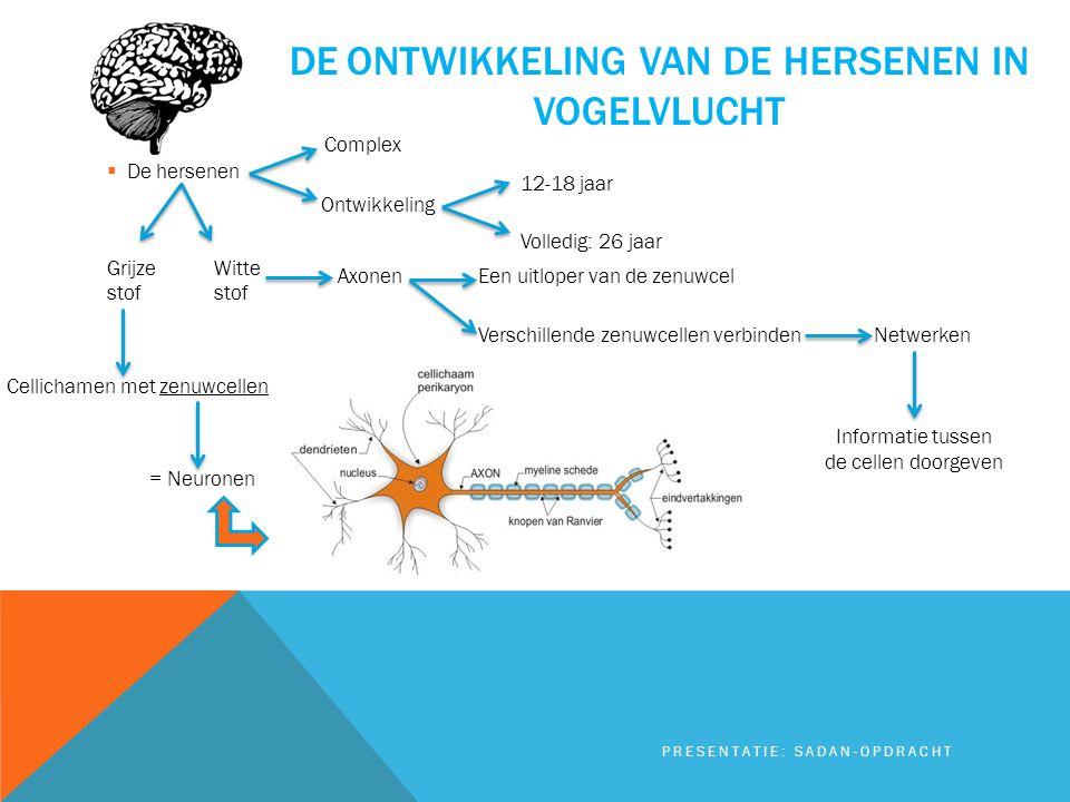 DE ONTWIKKELING VAN DE HERSENEN IN VOGELVLUCHT  De hersenen Grijze Wittestof PRESENTATIE: SADAN-OPDRACHT Cellichamen met zenuwcellen = Neuronen Axone