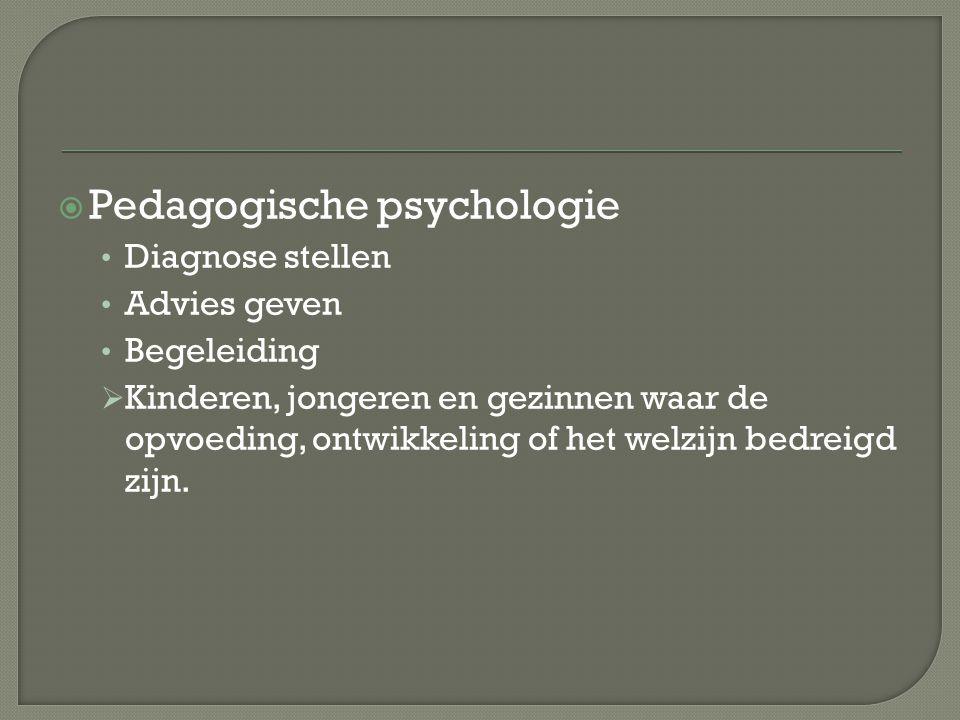  Pedagogische psychologie Diagnose stellen Advies geven Begeleiding  Kinderen, jongeren en gezinnen waar de opvoeding, ontwikkeling of het welzijn b