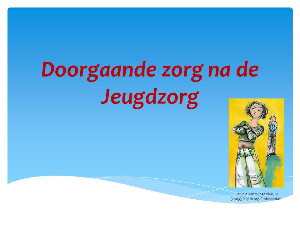 Doorgaande zorg na de Jeugdzorg Rietveld-van Wingerden, M. (2005),Jeugdzorg.Protestant.nu