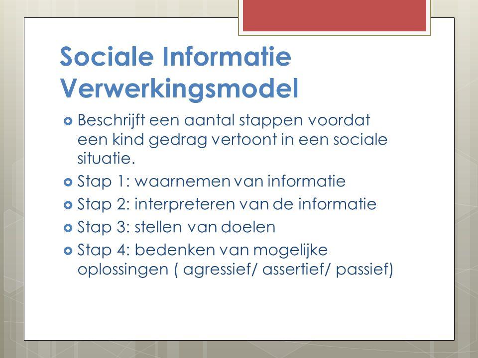 Sociale Informatie Verwerkingsmodel ( SIV)  Beschrijft hoe het waarnemen en verwerken van informatie de sociale interactie bepaalt of beïnvloedt.  B