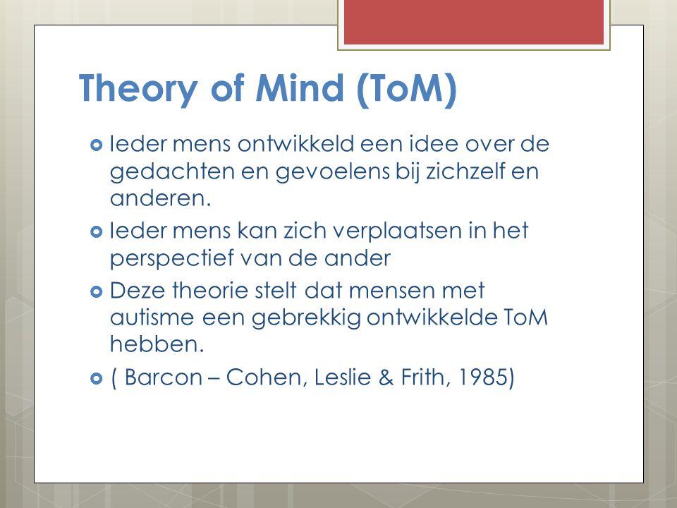 Belangrijkste theorie: Theory of Mind ( ToM)