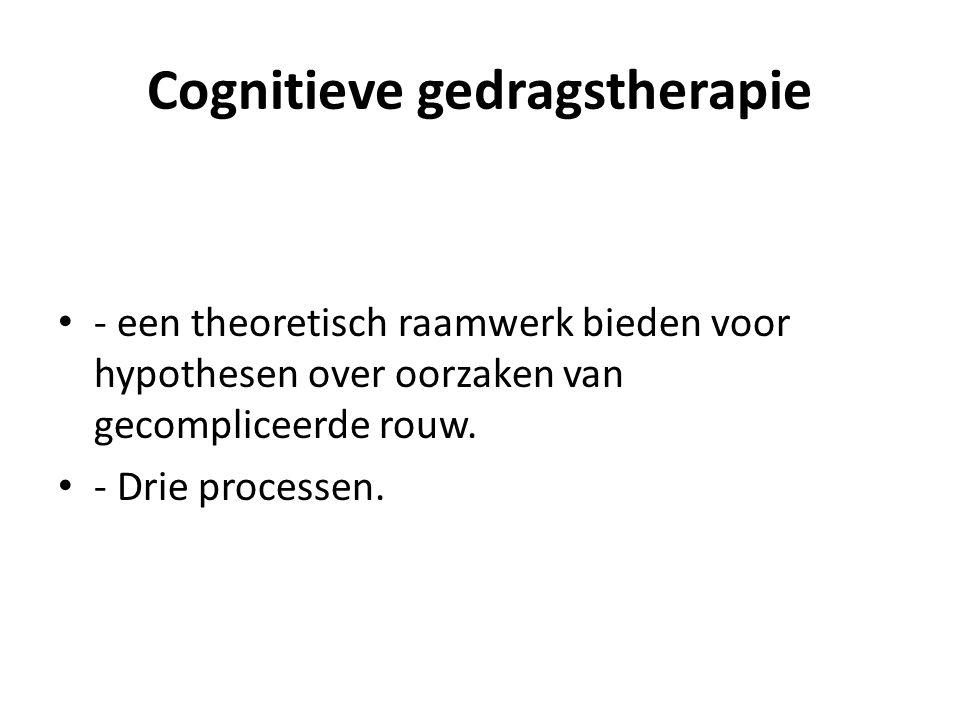 Cognitieve gedragstherapie - een theoretisch raamwerk bieden voor hypothesen over oorzaken van gecompliceerde rouw. - Drie processen.