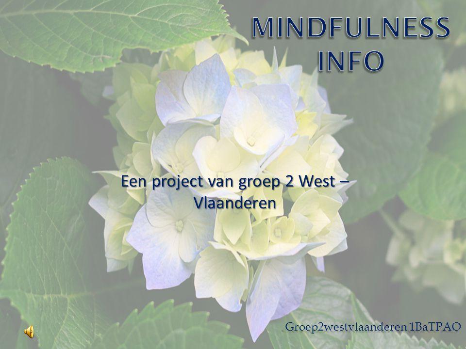 Een project van groep 2 West – Vlaanderen Groep2westvlaanderen 1BaTPAO