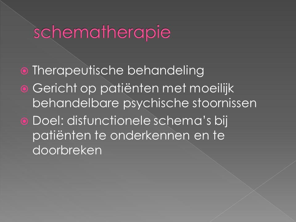  Therapeutische behandeling  Gericht op patiënten met moeilijk behandelbare psychische stoornissen  Doel: disfunctionele schema's bij patiënten te onderkennen en te doorbreken