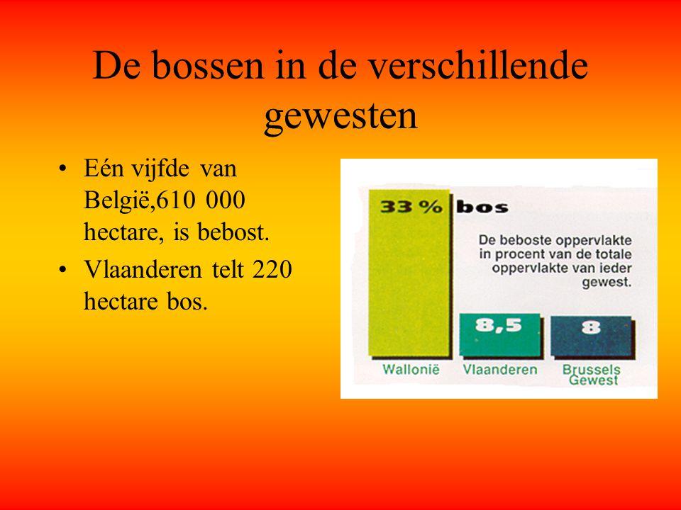 De bossen in de verschillende gewesten Eén vijfde van België,610 000 hectare, is bebost.