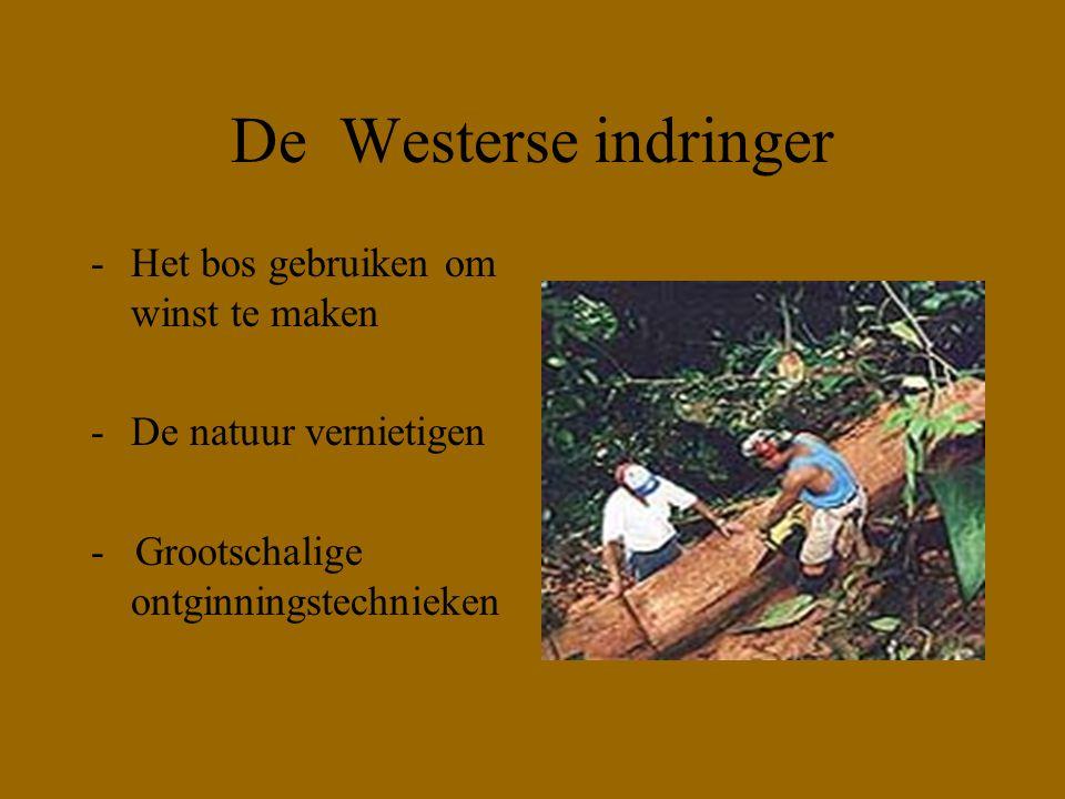 De Westerse indringer -Het bos gebruiken om winst te maken -De natuur vernietigen - Grootschalige ontginningstechnieken