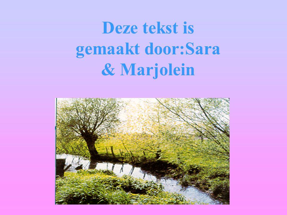 Deze tekst is gemaakt door:Sara & Marjolein