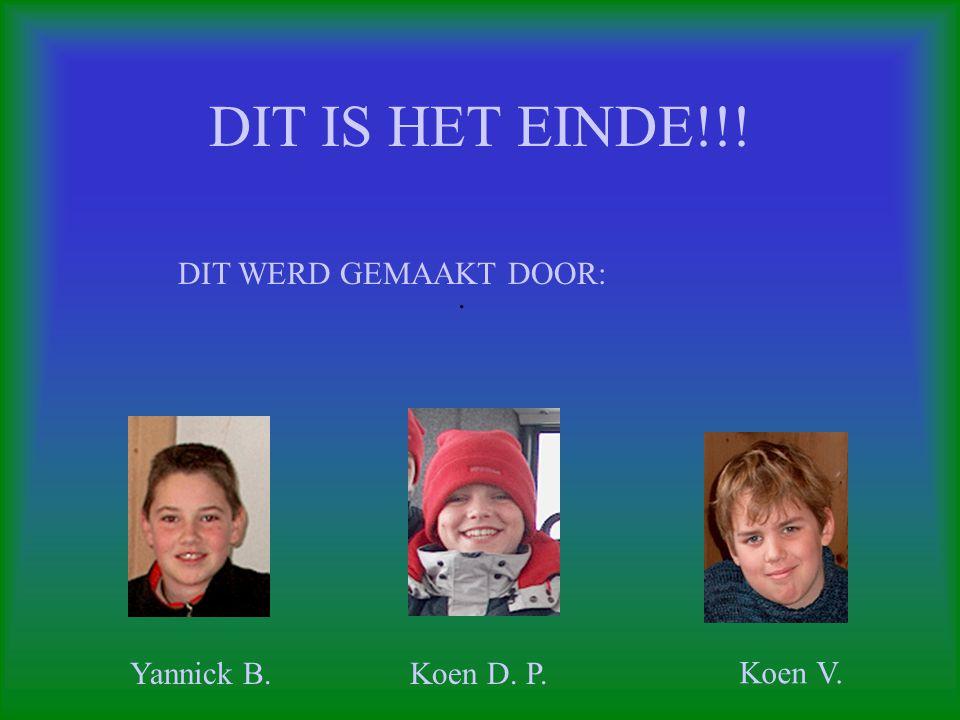 DIT IS HET EINDE!!!. DIT WERD GEMAAKT DOOR: Yannick B.Koen D. P. Koen V.