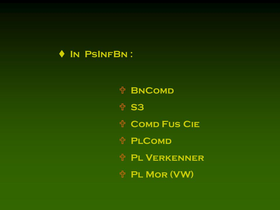  In PsInfBn :  BnComd  S3  Comd Fus Cie  PlComd  Pl Verkenner  Pl Mor (VW)
