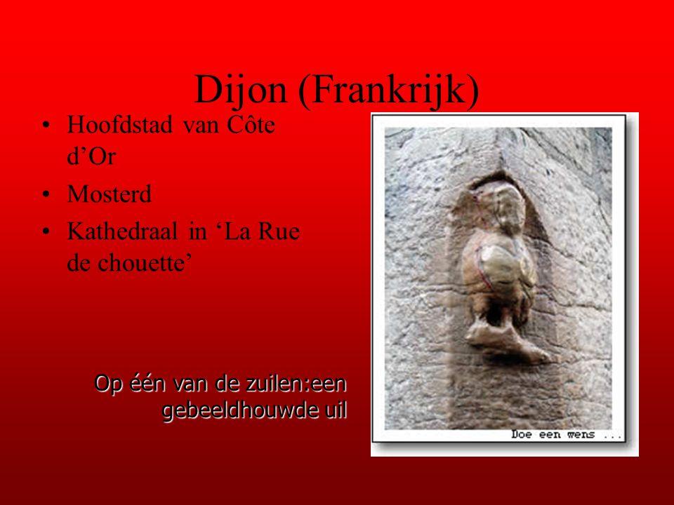 Dijon (Frankrijk) Hoofdstad van Côte d'Or Mosterd Kathedraal in 'La Rue de chouette' Op één van de zuilen:een gebeeldhouwde uil
