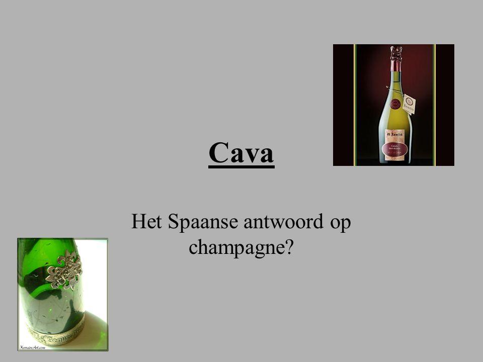 Cava Het Spaanse antwoord op champagne?