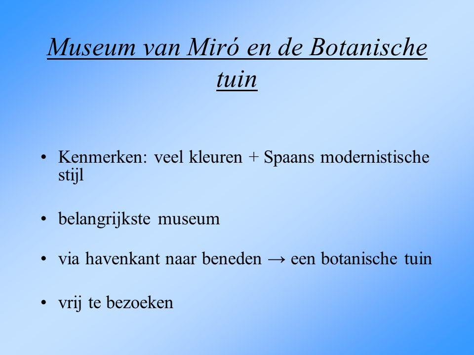 Museum van Miró en de Botanische tuin Kenmerken: veel kleuren + Spaans modernistische stijl belangrijkste museum via havenkant naar beneden → een bota