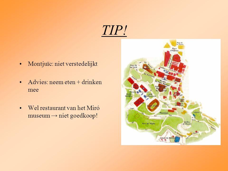 TIP! Montjuïc: niet verstedelijkt Advies: neem eten + drinken mee Wel restaurant van het Miró museum → niet goedkoop!