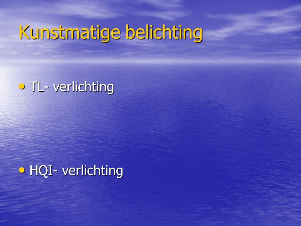 Kunstmatige belichting TL- verlichting TL- verlichting HQI- verlichting HQI- verlichting