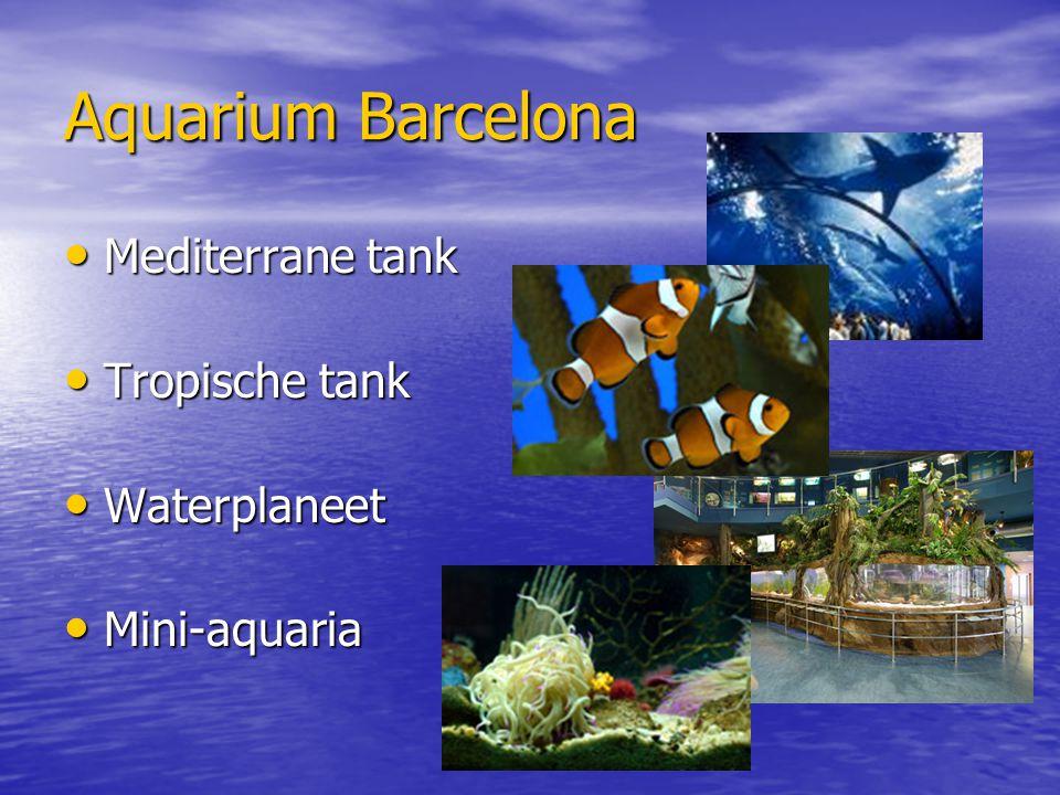 Aquarium Barcelona Mediterrane tank Mediterrane tank Tropische tank Tropische tank Waterplaneet Waterplaneet Mini-aquaria Mini-aquaria