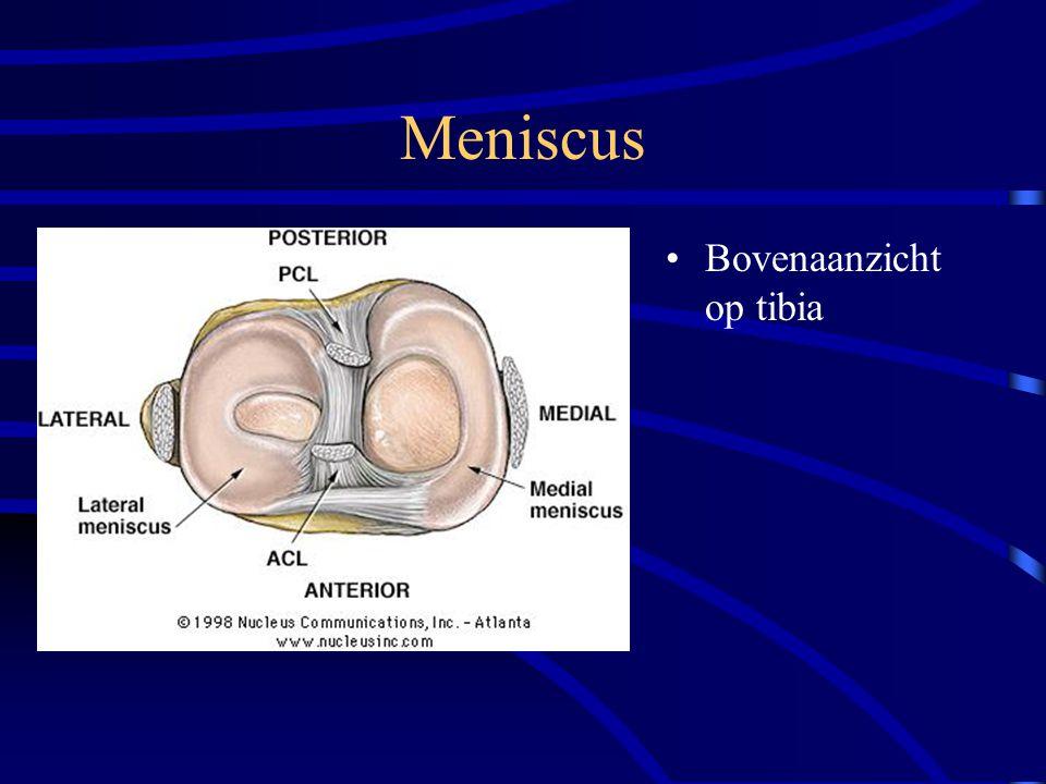 Meniscus Bovenaanzicht op tibia
