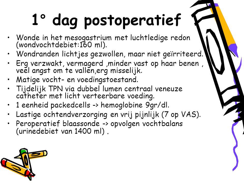 1° dag postoperatief Wonde in het mesogastrium met luchtledige redon (wondvochtdebiet:160 ml).