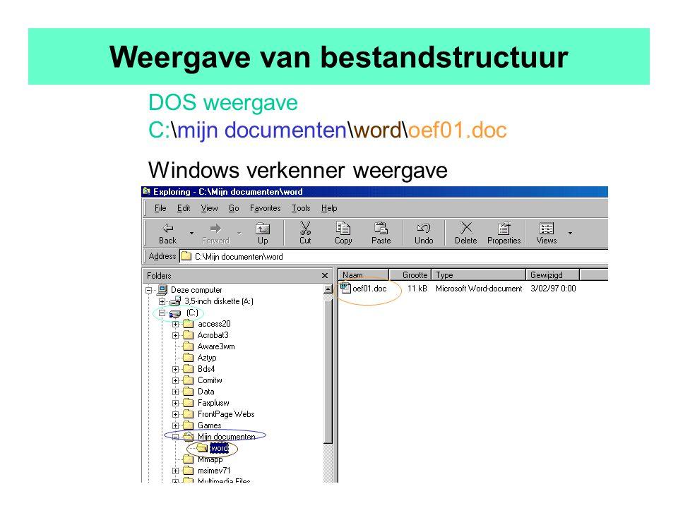 Weergave van bestandstructuur DOS weergave C:\mijn documenten\word\oef01.doc Windows verkenner weergave