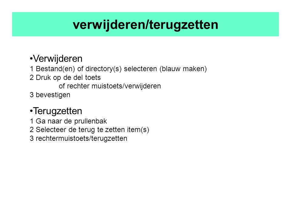 verwijderen/terugzetten Verwijderen 1 Bestand(en) of directory(s) selecteren (blauw maken) 2 Druk op de del toets of rechter muistoets/verwijderen 3 bevestigen Terugzetten 1 Ga naar de prullenbak 2 Selecteer de terug te zetten item(s) 3 rechtermuistoets/terugzetten