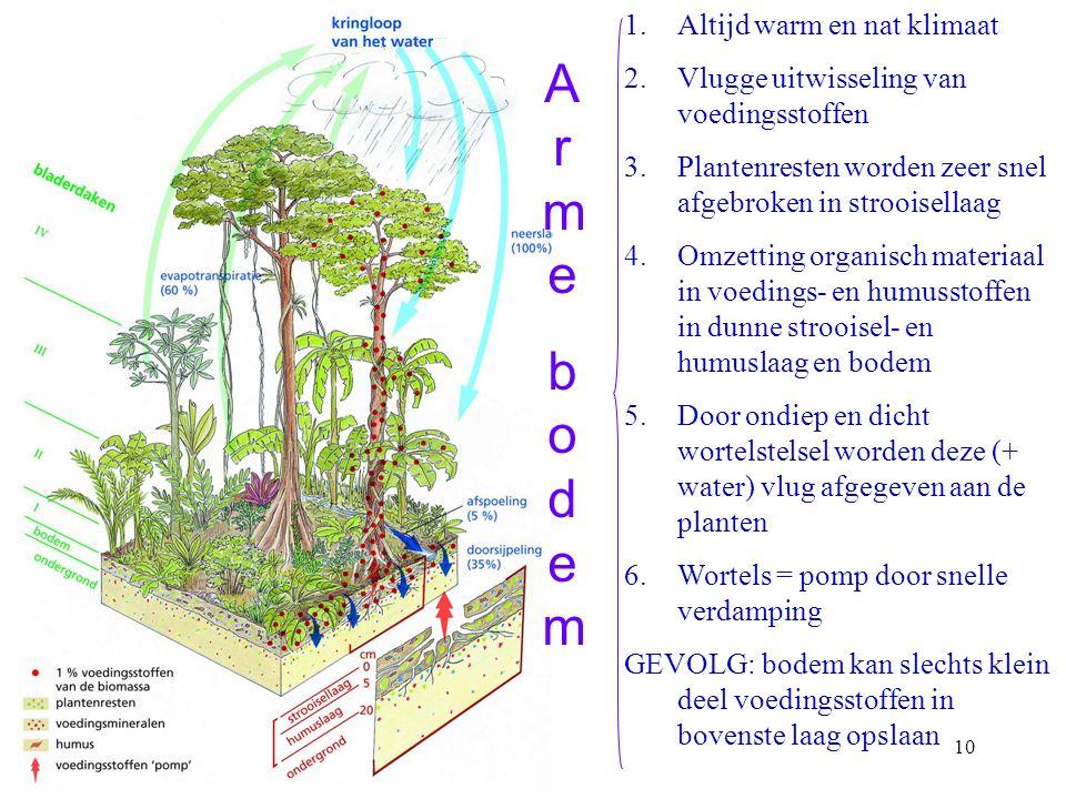 Wat kenmerkt het tropisch regenwoud? BESLUIT: 1.Zeer dichtbegroeid altijd groen woud 2.Een typische verticale structuur met verschillende bladerdaken