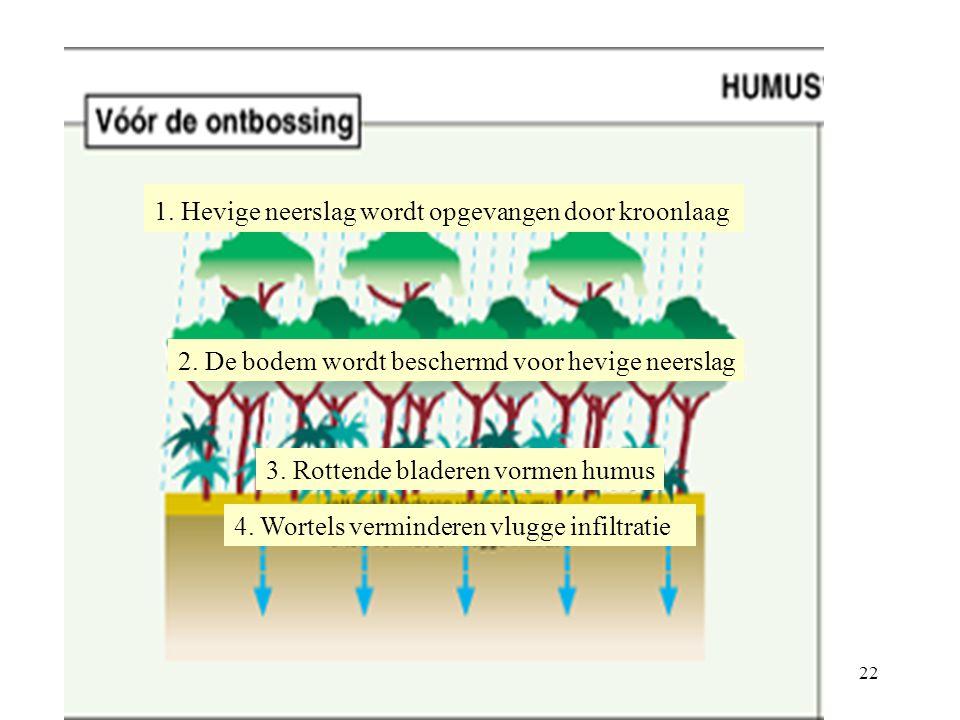 aanleg van plantages hout voor industrielanden aanleg van reusachtige veeteeltbedrijven ontginning van delfstoffen MNO's overheid eigen bevolking Ten