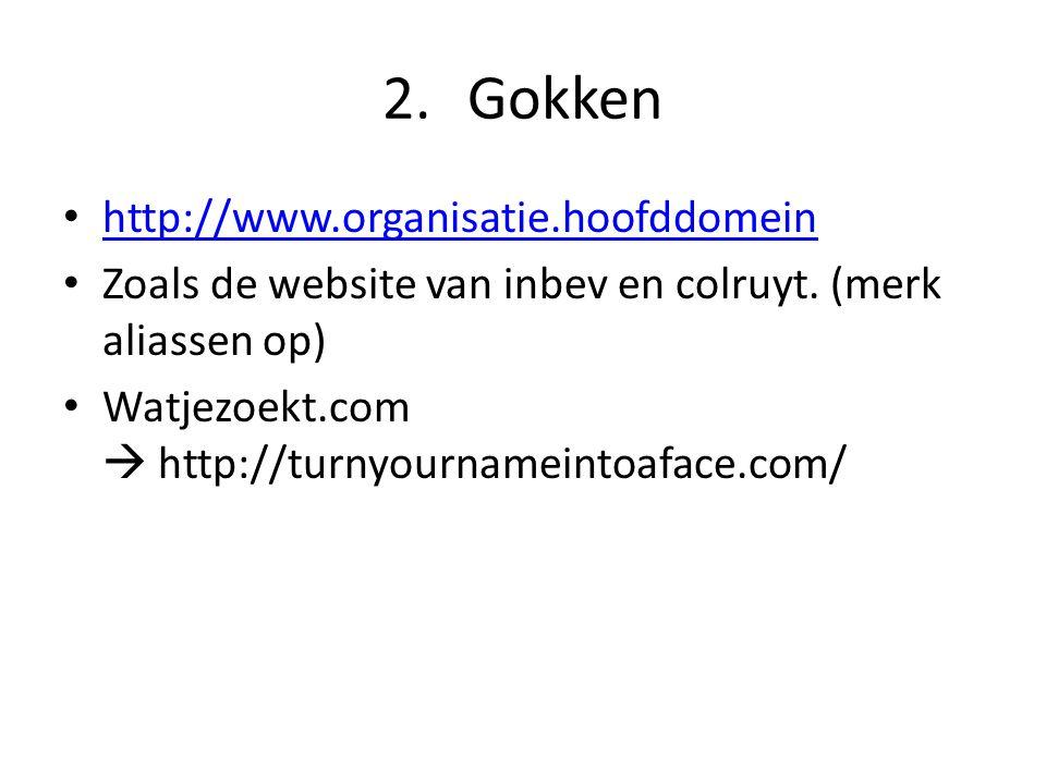 2.Gokken http://www.organisatie.hoofddomein Zoals de website van inbev en colruyt. (merk aliassen op) Watjezoekt.com  http://turnyournameintoaface.co