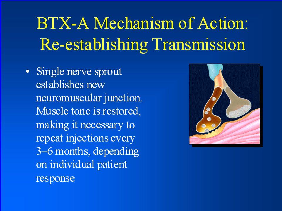 BTX-A Mechanism of Action: Re- establishing Transmission