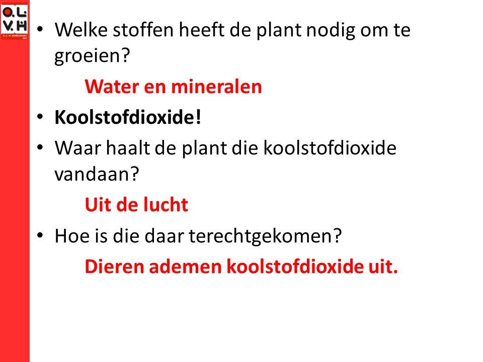 Welke stoffen heeft de plant nodig om te groeien.Water en mineralen Koolstofdioxide.
