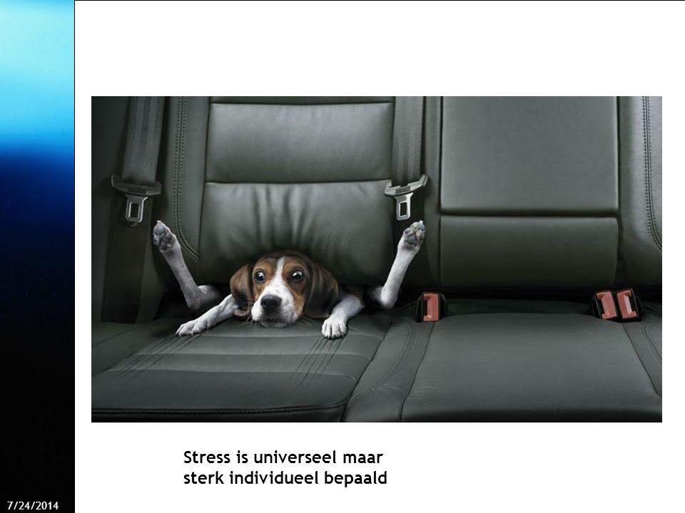 7/24/2014 Free Template from www.brainybetty.com 40 Stress is universeel maar sterk individueel bepaald