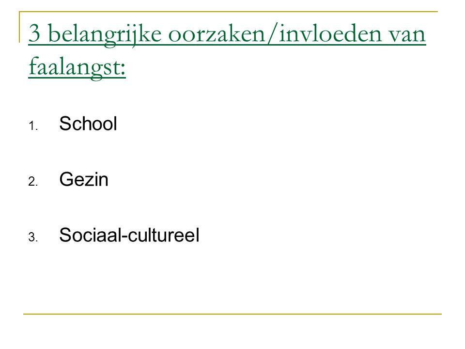 3 belangrijke oorzaken/invloeden van faalangst: 1. School 2. Gezin 3. Sociaal-cultureel