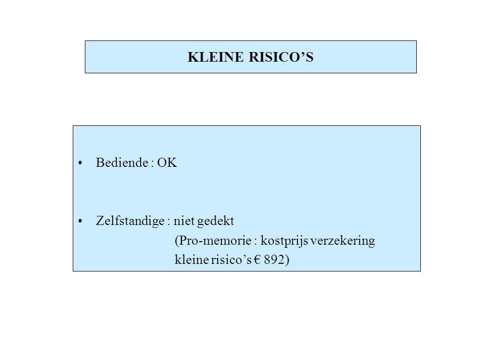 KLEINE RISICO'S Bediende : OK Zelfstandige : niet gedekt (Pro-memorie : kostprijs verzekering kleine risico's € 892)