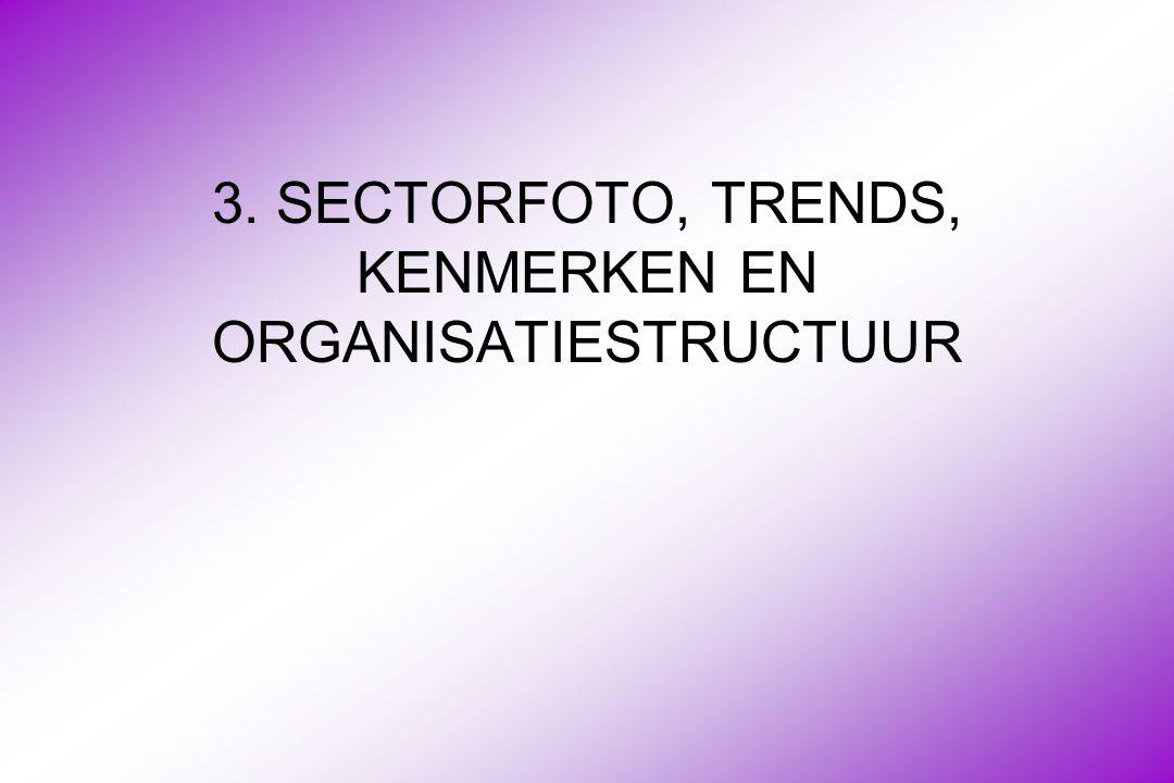 3. SECTORFOTO, TRENDS, KENMERKEN EN ORGANISATIESTRUCTUUR