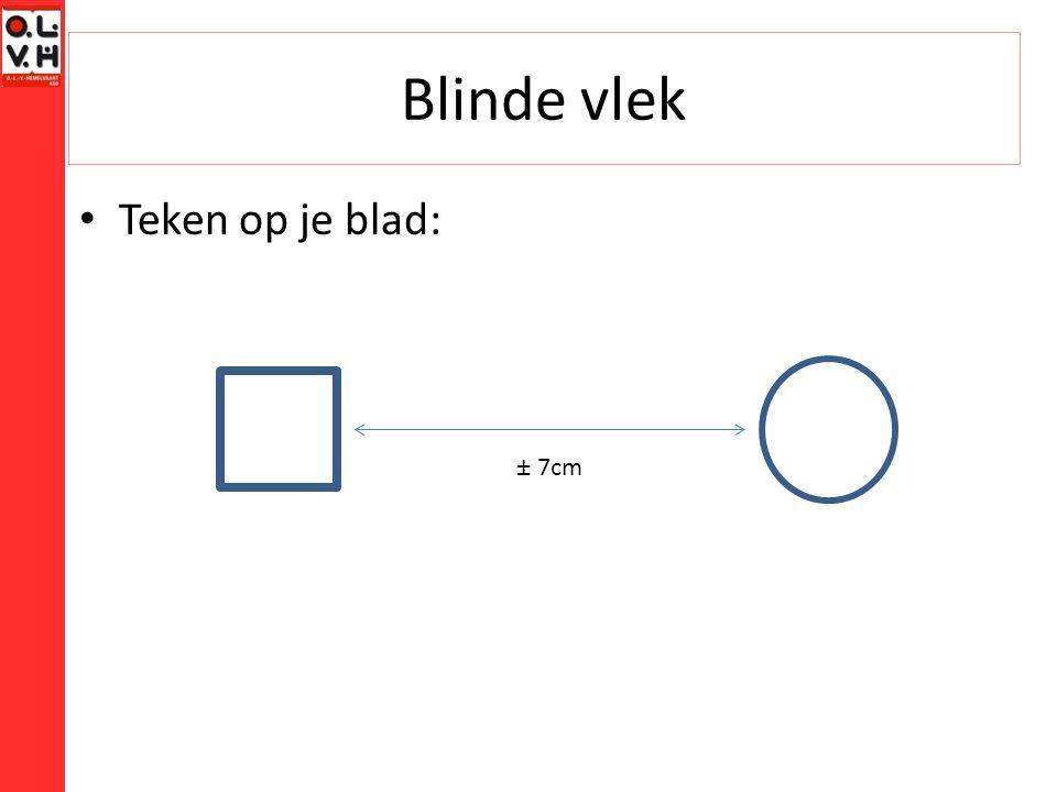 Blinde vlek Teken op je blad: ± 7cm