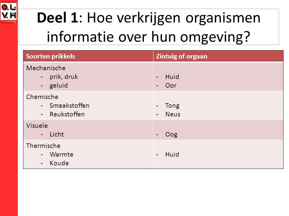 Deel 1: Hoe verkrijgen organismen informatie over hun omgeving? Soorten prikkelsZintuig of orgaan Mechanische -prik, druk -geluid -Huid -Oor Chemische