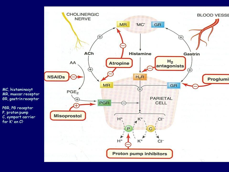 stoffen gebruikt bij maag- en duodenumulcera a)H 2 -receptorantagonisten Cimetidine, Ranitidine, Famotidine b)Protonpompinhibitoren (PPI) Omeprazole en andere C) Misoprostol d)Antacida e)Antibiotica