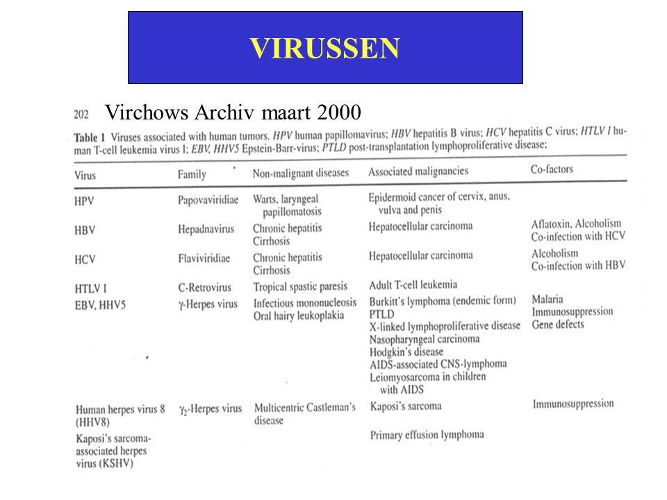 Virchows Archiv maart 2000 VIRUSSEN