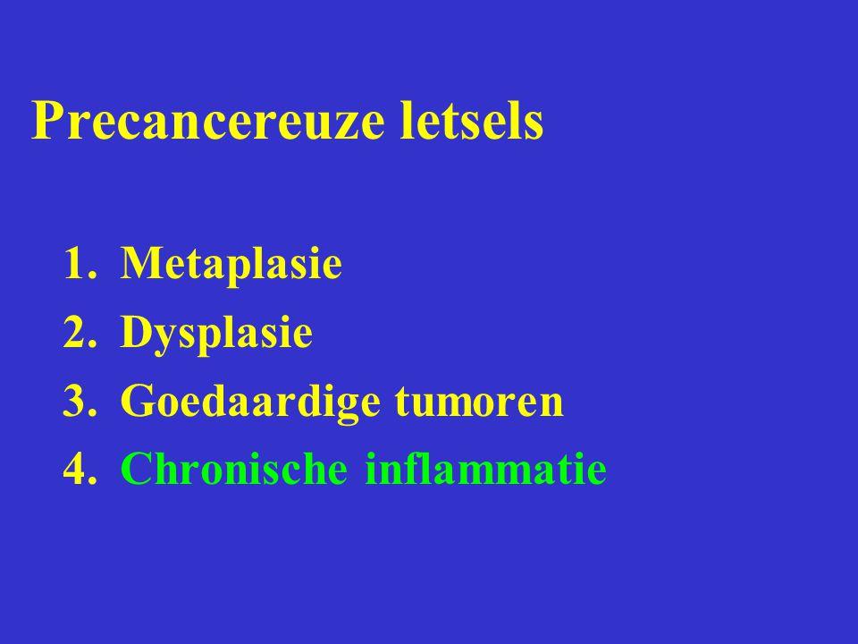 Precancereuze letsels 1.Metaplasie 2.Dysplasie 3.Goedaardige tumoren 4.Chronische inflammatie