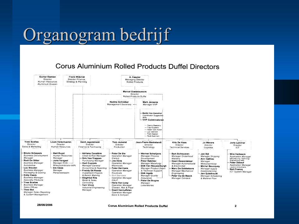 Organogram bedrijf