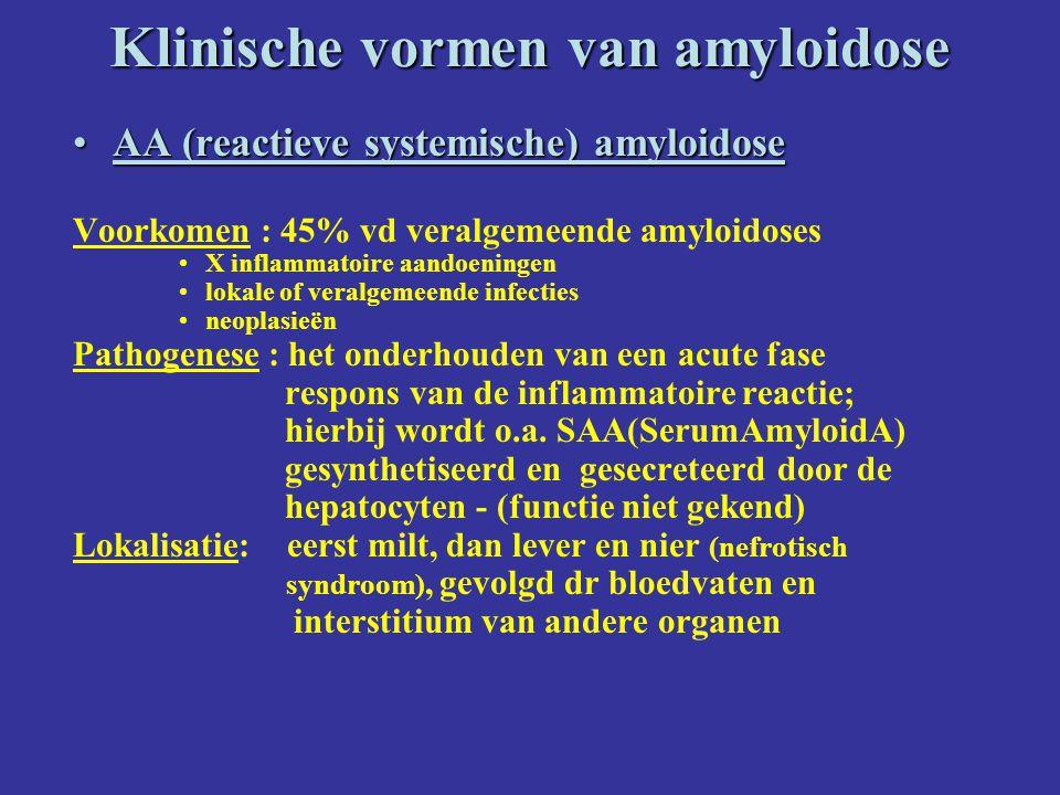 Klinische vormen van amyloidose AA (reactieve systemische) amyloidoseAA (reactieve systemische) amyloidose Voorkomen : 45% vd veralgemeende amyloidoses X inflammatoire aandoeningen lokale of veralgemeende infecties neoplasieën Pathogenese : het onderhouden van een acute fase respons van de inflammatoire reactie; hierbij wordt o.a.