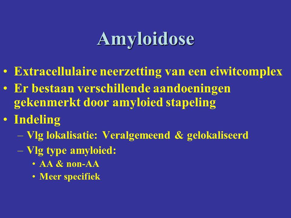 Familiale vormen van veralgemeende amyloidoseFamiliale vormen van veralgemeende amyloidose Familiale Middellandse Zee koortsFamiliale Middellandse Zee koorts –Voorkomen: in beperkte zone rond de Middellandse Zee (Joden, Armeniers, Turken, Arabieren) –Autosomaal recessief (MEFV-mediterranean fever- gen mutatie) –Pathogenese : koorts + serosale inflammatie (peritonitis, arthritis, pleuritis) -> SAA  en AA amyloidose –  : colchicine Familiale Amyloied PolyneuropathieFamiliale Amyloied Polyneuropathie –Voorkomen : familiaal –Pathogenese : afwijkend transthyretine-gen Transthyretine is een plasma proteine dat retinol en thyroxine bindt.