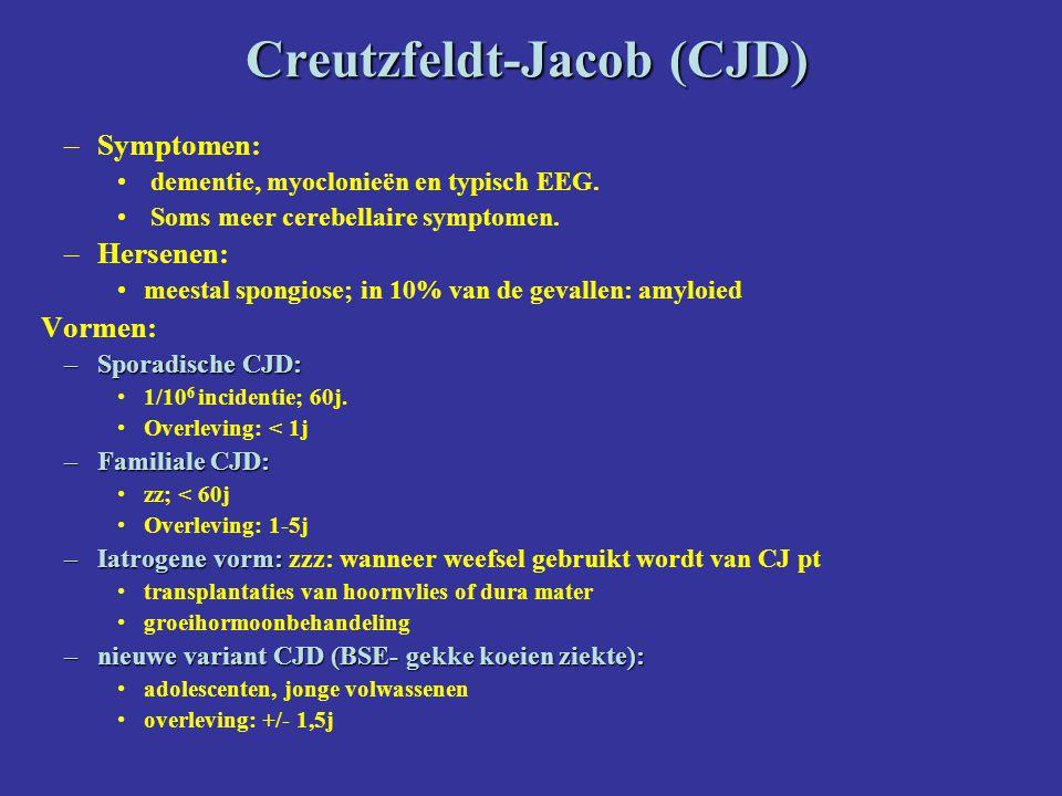 Creutzfeldt-Jacob (CJD) –Symptomen: dementie, myoclonieën en typisch EEG. Soms meer cerebellaire symptomen. –Hersenen: meestal spongiose; in 10% van d